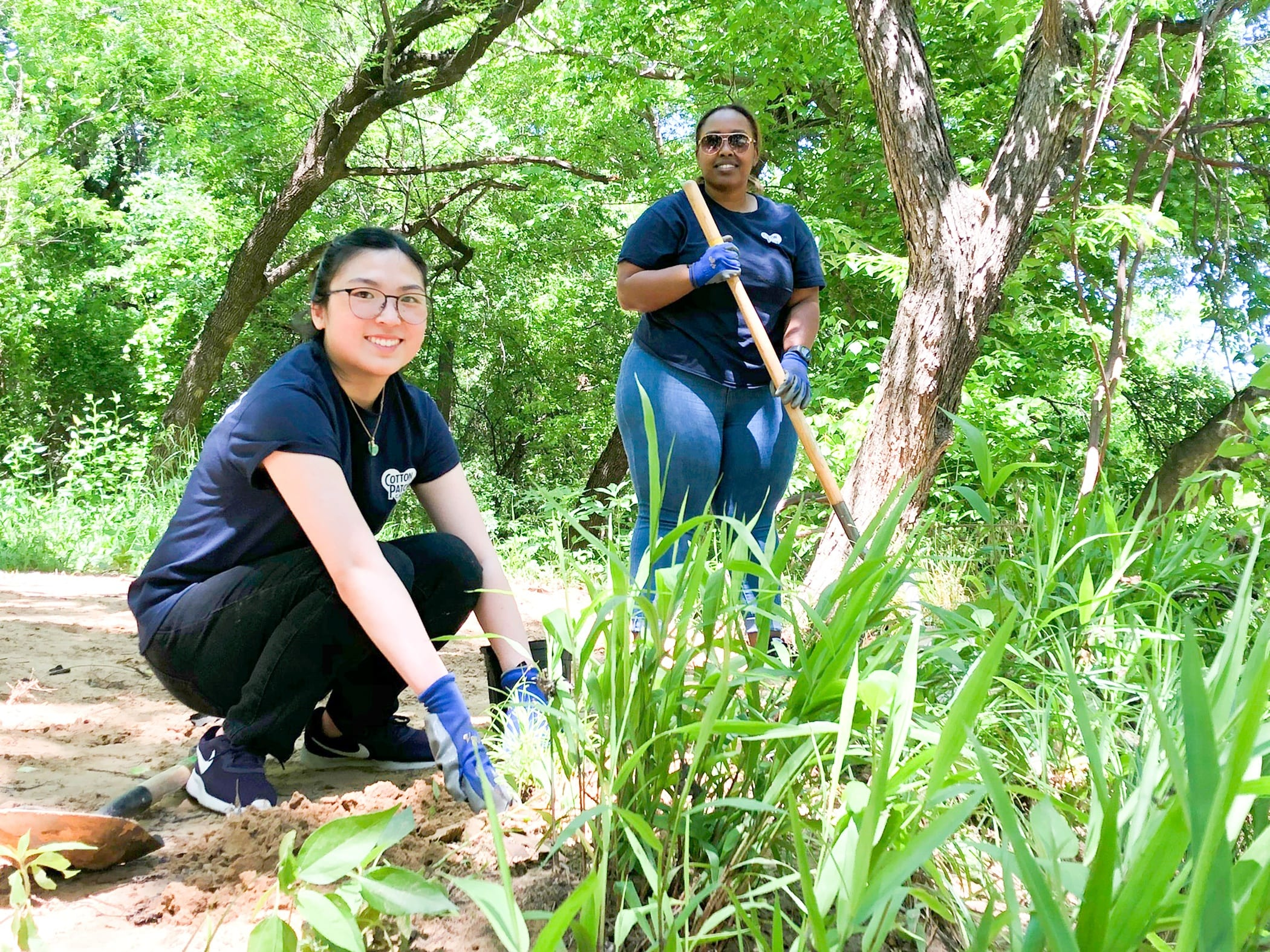 Volunteering in Grapevine: How to Get Involved in Your Community