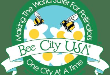 bee city main logo for web orig