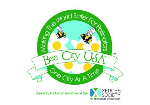Bee City 24x24 Street Sign webimage